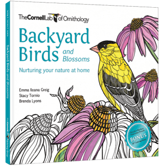 Backyard Birds And Blossoms