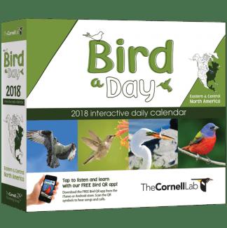 BIRD-A-DAY-Eastern-BOX-LR