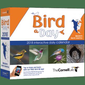 BIRD-A-DAY-Western-BOX-LR