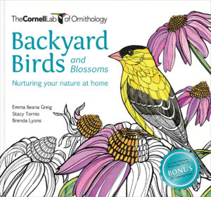 BACKYARD BIRDS & BLOSSOMS Coloring Page Downloads – Cornell ...