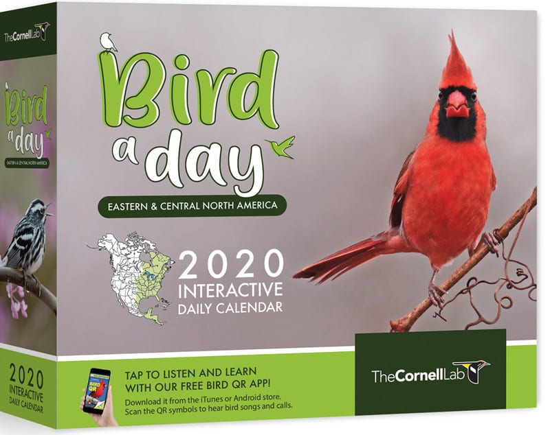 Cornell Calendar 2020 Bird A Day 2020 Desk Calendar (Eastern & Central) – Cornell Lab