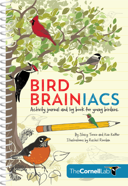 bird-brainiacs